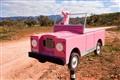 Outback Roadside Mailbox