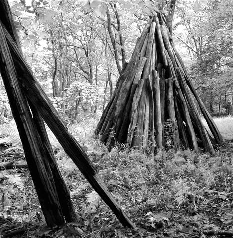 wood pile BW (sml)