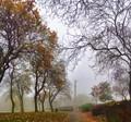 Mowbray Park_Sunderland_UK