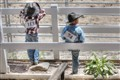 Little Cowboys at the Junior Rodeo