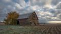 Still Standing - Custer, Michigan