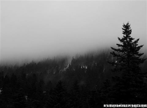 F Fog