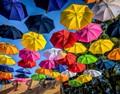 Umbrella Land