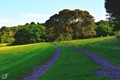 Killalea Path