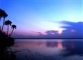 09 Mar 2011 Sunset 042