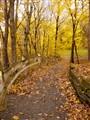 Poestenkill Gorge Trail