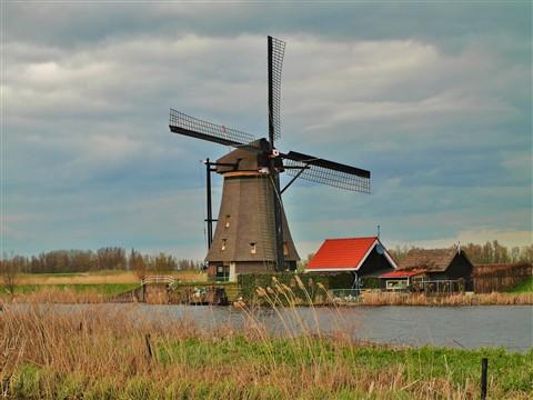 Amsterdam & Keukenhof 079