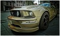 MY WISH LIST ! THE MUSTANG