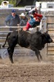 Flying out of the Cochrane rodeo