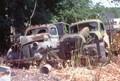 Two haul trucks at Orkin Scrap Steel Yard in Slatington, PA.
