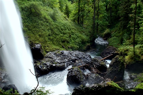 Waterfall - Silver Falls OR