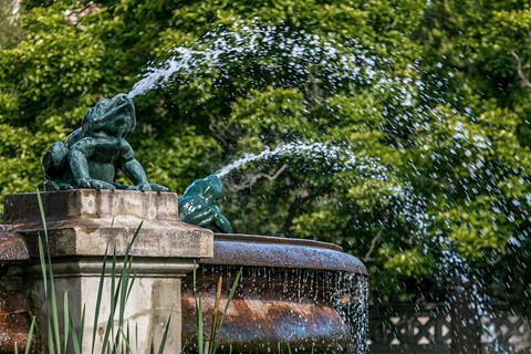 Lund - Water spraying frogs