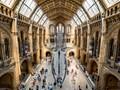 Natural History Museum - London UK