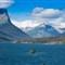 Wild Goose Island-1