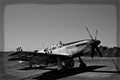 WWII P51 Mustang