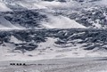 Atabasca Glacier, Alberta, Canada