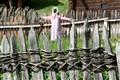 Tirolean fence