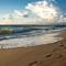 2019-08-22 072316 0012 - Seabrook Beach