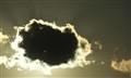 bulut piranhası