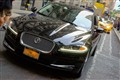 Jaguar Prowls New York City