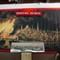 Boston Burning 1872