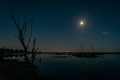 Moonlit Bolsa Chica Wetlands-8283