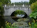 Modern water lilies pond