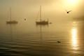 Sunrise in Muros