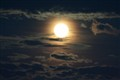 Moon shine 103