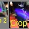 Crop-23