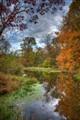 Milltown Pond