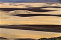 Skeleton Coast desert