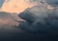 cloud iguana