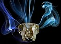 Smoking Sheep's Skull