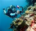 Underwater photographer (1 of 1)