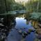 DSC_2384 Avalon Pond