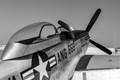 P-51 Wing Shot