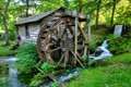 Reed Springs Mill