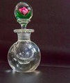 Kaziun Glass Rose