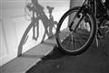 Love of Bikes