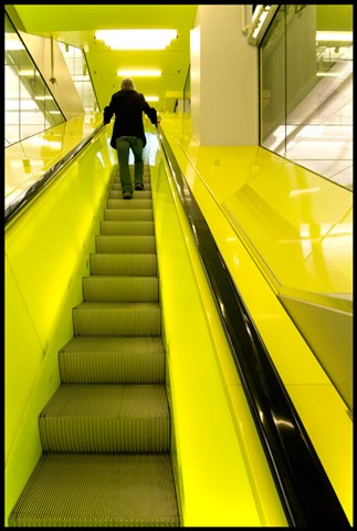 Ascent in Yellow