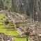Macchu Picchu (1)