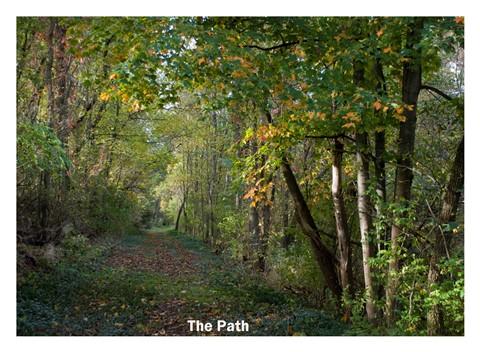 the path matte