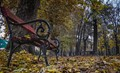 A bench in late autumn