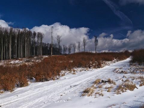 Male-Karpaty-zima-01