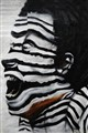 DSC_3078 (2)...the zebra man...