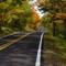 Michigan Autumn Road