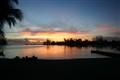 Cayman Summer Nights