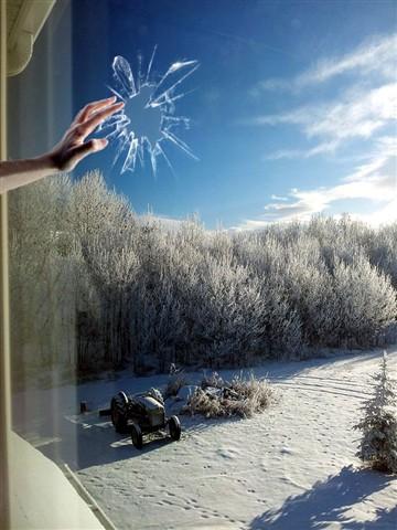 Alberta cold