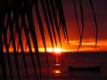 Tobagan Sunset